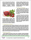 0000079201 Word Template - Page 4