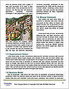 0000079203 Word Templates - Page 4