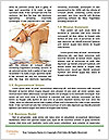 0000079204 Word Template - Page 4