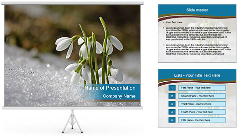 0000079211 PowerPoint Template