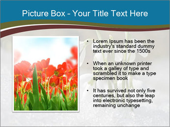 0000079211 PowerPoint Templates - Slide 13