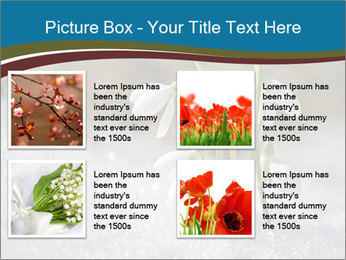 0000079211 PowerPoint Templates - Slide 14
