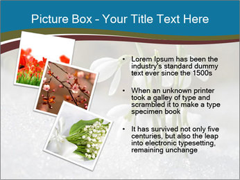 0000079211 PowerPoint Templates - Slide 17
