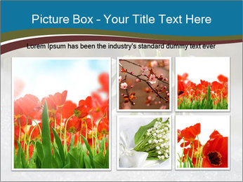 0000079211 PowerPoint Templates - Slide 19