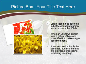 0000079211 PowerPoint Templates - Slide 20