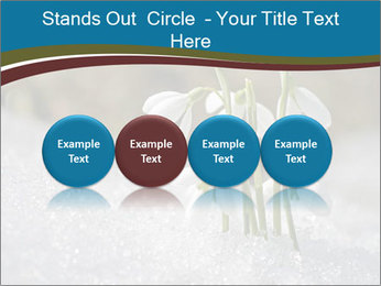 0000079211 PowerPoint Templates - Slide 76