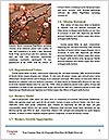 0000079211 Word Templates - Page 4