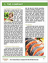 0000079216 Word Template - Page 3