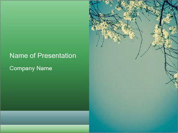 0000079217 PowerPoint Template - Slide 1