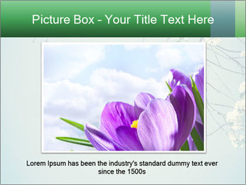 0000079217 PowerPoint Template - Slide 16