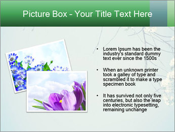 0000079217 PowerPoint Template - Slide 20