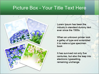0000079217 PowerPoint Template - Slide 23