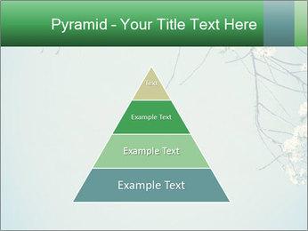 0000079217 PowerPoint Templates - Slide 30