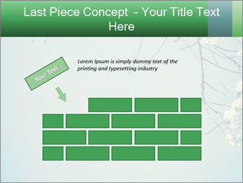 0000079217 PowerPoint Template - Slide 46