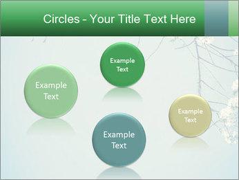 0000079217 PowerPoint Templates - Slide 77