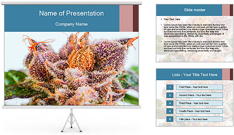 0000079245 PowerPoint Template