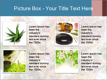 0000079245 PowerPoint Template - Slide 14