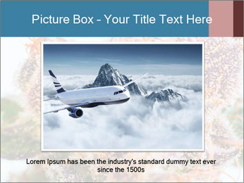 0000079245 PowerPoint Template - Slide 16