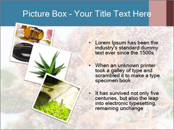0000079245 PowerPoint Template - Slide 17