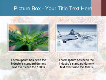 0000079245 PowerPoint Template - Slide 18