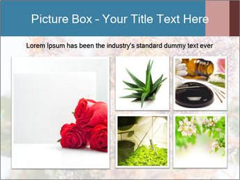 0000079245 PowerPoint Template - Slide 19