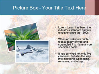 0000079245 PowerPoint Template - Slide 20