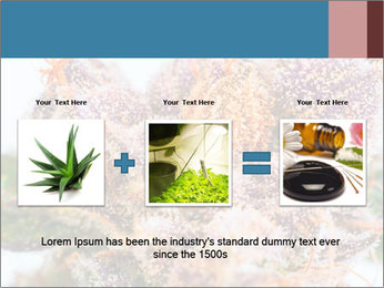 0000079245 PowerPoint Template - Slide 22