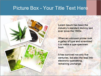0000079245 PowerPoint Template - Slide 23