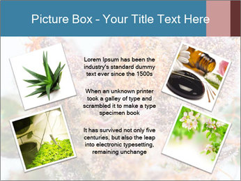 0000079245 PowerPoint Template - Slide 24
