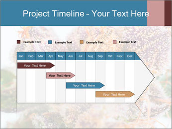 0000079245 PowerPoint Template - Slide 25