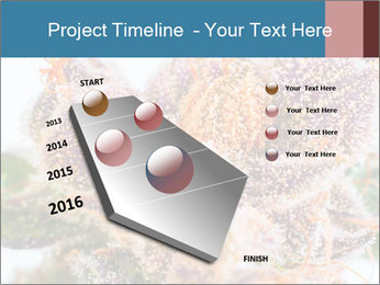0000079245 PowerPoint Template - Slide 26