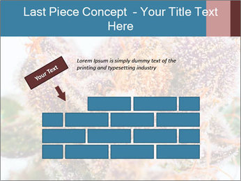 0000079245 PowerPoint Template - Slide 46