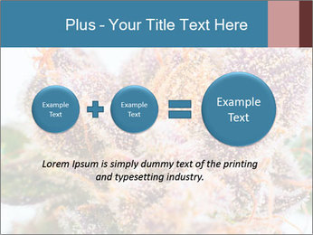 0000079245 PowerPoint Template - Slide 75