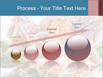 0000079245 PowerPoint Template - Slide 87