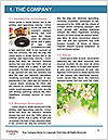 0000079245 Word Template - Page 3
