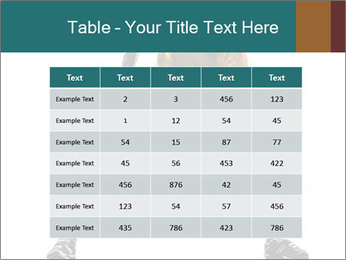 0000079247 PowerPoint Template - Slide 55