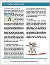 0000079262 Word Template - Page 3