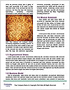 0000079267 Word Template - Page 4