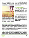 0000079268 Word Template - Page 4