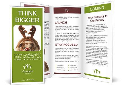 0000079269 Brochure Templates