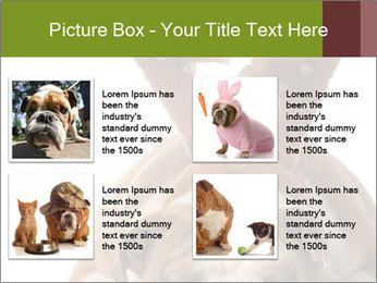 0000079269 PowerPoint Templates - Slide 14