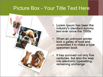0000079269 PowerPoint Templates - Slide 17