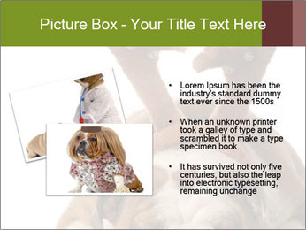 0000079269 PowerPoint Templates - Slide 20