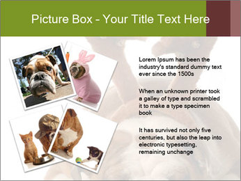 0000079269 PowerPoint Templates - Slide 23
