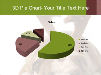 0000079269 PowerPoint Templates - Slide 35