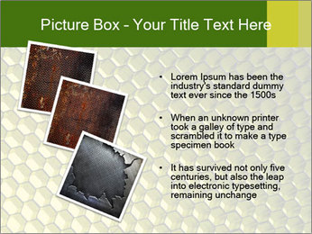 0000079272 PowerPoint Template - Slide 17