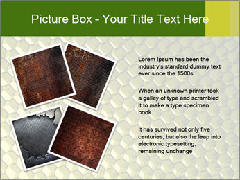 0000079272 PowerPoint Template - Slide 23