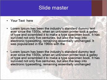 0000079276 PowerPoint Templates - Slide 2