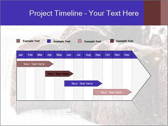 0000079276 PowerPoint Templates - Slide 25