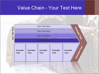 0000079276 PowerPoint Templates - Slide 27